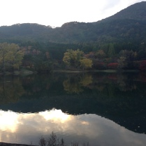 A picture of the lake during fall
